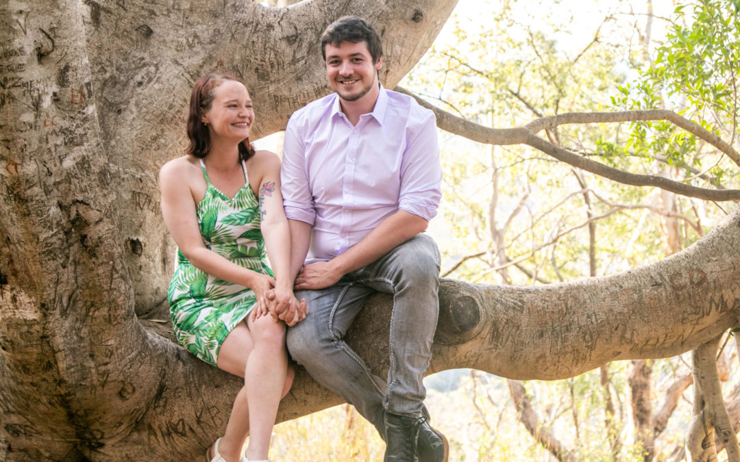 Engagement Photography - Couple in tree