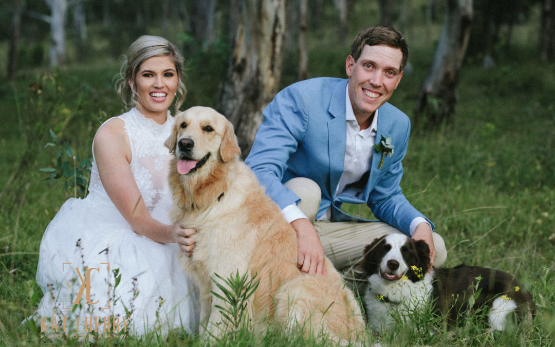 Wedding Photography with Dogs