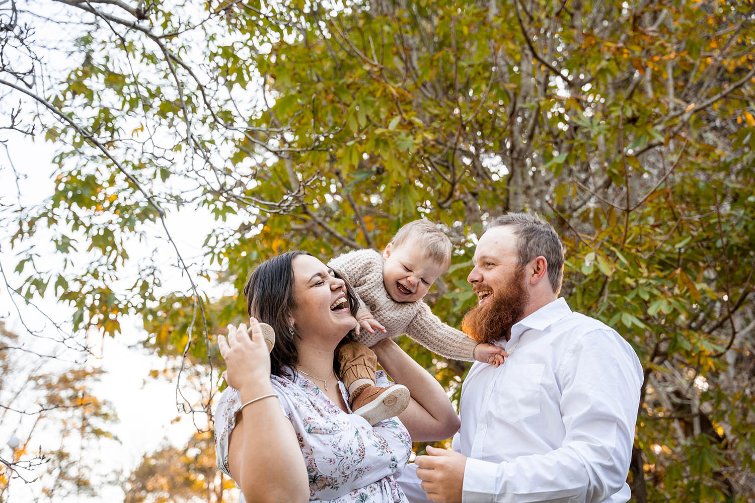 Family Photography - Family Laughing
