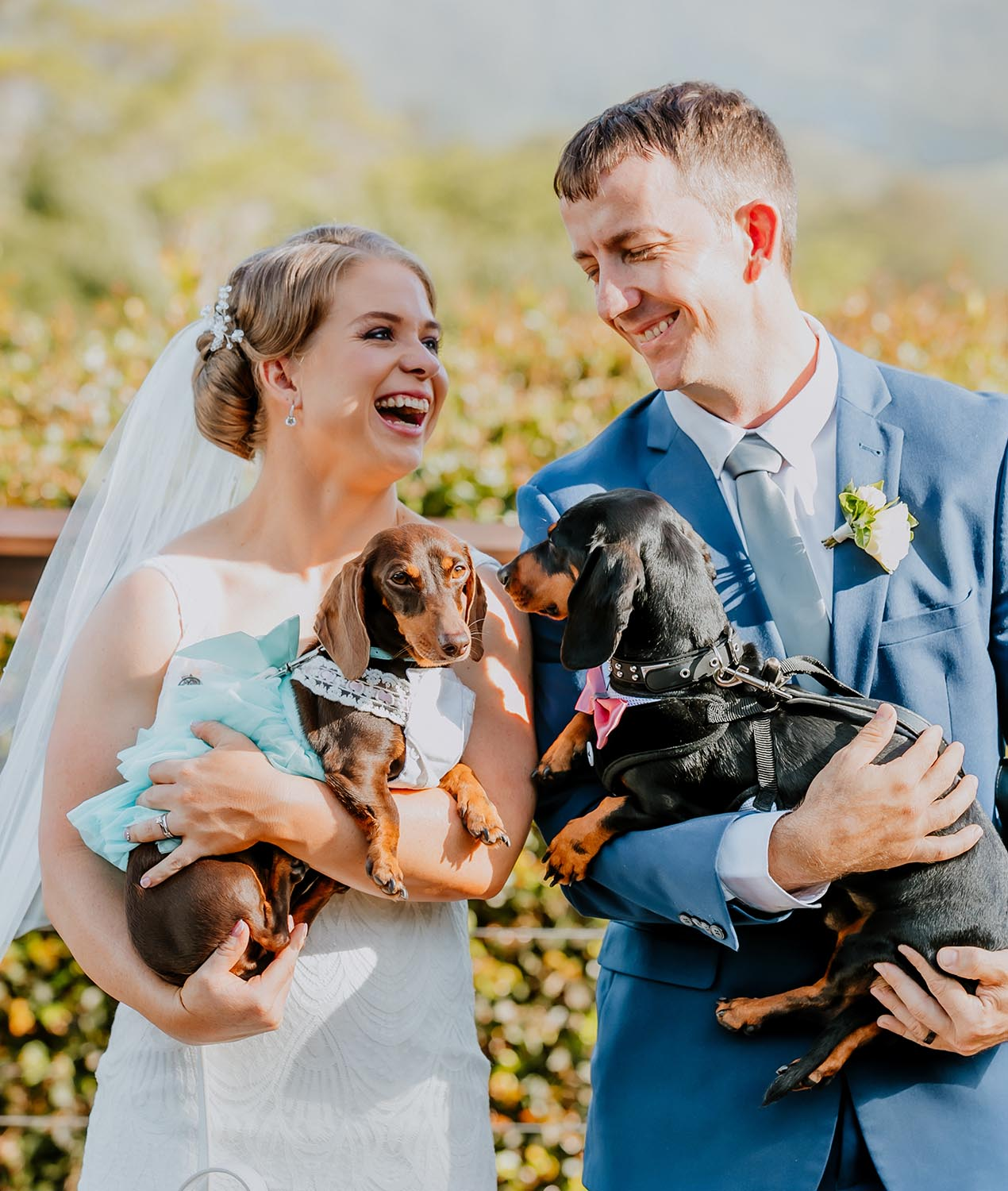 Wedding Photography - Couple with sausage dogs