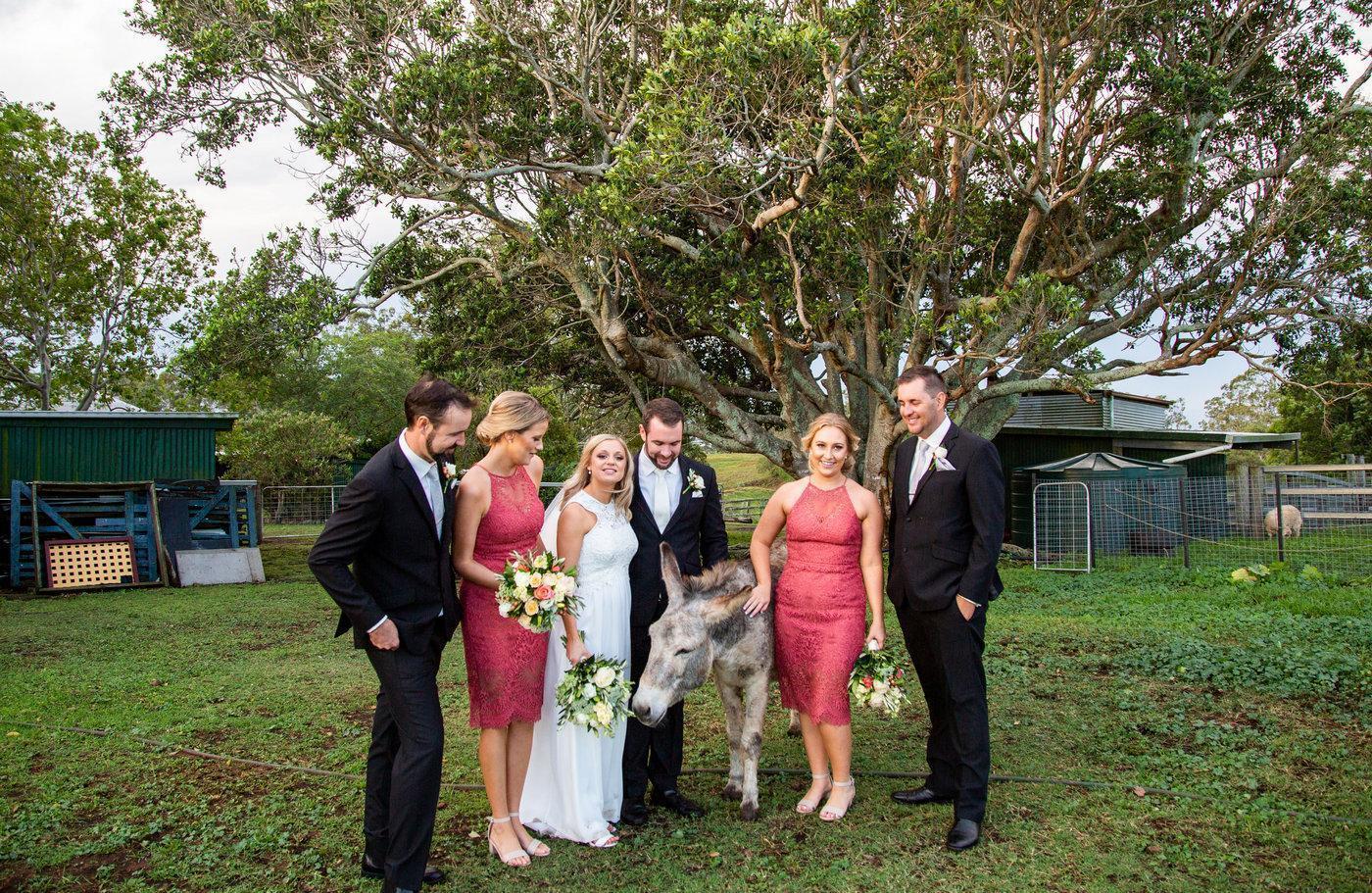 Wedding Photography bridal party with donkey